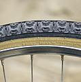 Mountain Bike Tyre by Andrew Lambert Photography