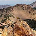 Mountain Climber by Adam Jewell
