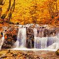 Mountain Creek Falls by Lynne Jenkins