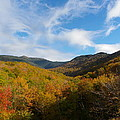 Mountain Foliage And Blue Skies by Sarah Lamoureux