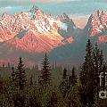 Mountain Glow by Peggy Starks
