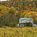 Mountain Home by Steve Harrington