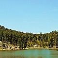 Mountain Lake by Judy Hall-Folde