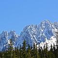 Mountain Majesty by Diana Hatcher