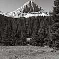 Mountain Peak Above The Tree Line by Roderick Bley