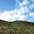 Mountain Range Scenic Drive Towards Nafplion In Greece by John Shiron