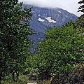 Mountain Road by Brenda Hagenson