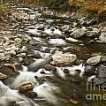 Mountain Stream In Autumn by John Greim