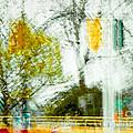 Movement On Denman Street by Emilio Lovisa