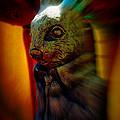 Mr. Rabbit by Susanne Van Hulst