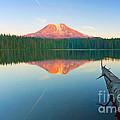 Mt. Adams Alpenglow by Mike  Dawson
