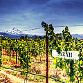 Mt Hood Winery by Vicki Jauron