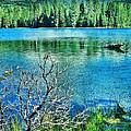 Mt Lassen by Jill Battaglia