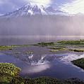 Mt Rainier An Active Volcano Encased by Tim Fitzharris