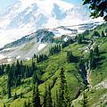 Mt. Rainier by C Sitton