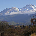 Mt Shasta Autumn II by Mick Anderson