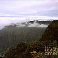 Mt Waialeale by Paulette B Wright