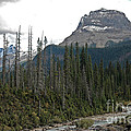 Mt Wapta Under Steely Skies by Bob and Nancy Kendrick