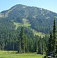 Mt. Washington by Marilyn Wilson