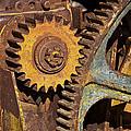 Mud Caked Gears by Phyllis Denton