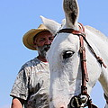 Mules At Benson Mule Day by Travis Truelove