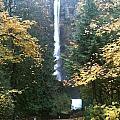Multnomah Falls II by Holly Hazlett