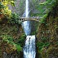 Multnomah Falls by Kelly Manning