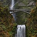 Multnomah Falls by Tamara Brown