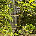 Munising Falls 4 by John Brueske