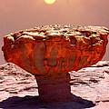 Mushroom by E  Kraizberg