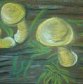 Mushrooms On A Hill by Eva Jones