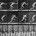 Muybridge Locomotion, Man Running, 1887 by Photo Researchers