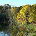 My Autumn Splendor by Brian  Maloney