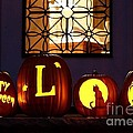My Pumpkins by Living Color Photography Lorraine Lynch