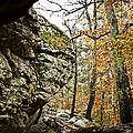 My Rock My Shelter by Kim Henderson