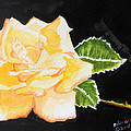 My Yellow Rose by Arlene  Wright-Correll