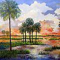 Myakka Sunset by Lou Ann Bagnall