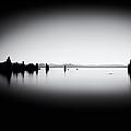 Mysterious Mono Lake by Tanya Harrison