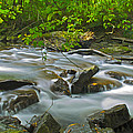 Mystic Creek by Michael Pope