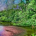 Mystic Lake by Debbie Portwood