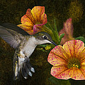 Mystical Flight by Steven Richardson