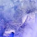 Mystical Garden- Butterflies In Blue by Lisa Woodburn