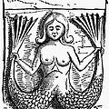Mythology: Mermaid by Granger