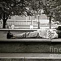 Nap by Gwyn Newcombe