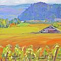 Napa Valley Mountains by Barbara Anna Knauf