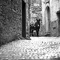 Narrow Street In Orvieto Italy by Emanuel Tanjala