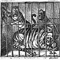 Nast: Tweed Cartoon, 1871 by Granger