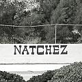 Natchez by Rob Hans