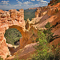 Natural Bridge In Bryce Canyon National Park by Louise Heusinkveld