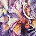 Natural Rhythms by June Rollins